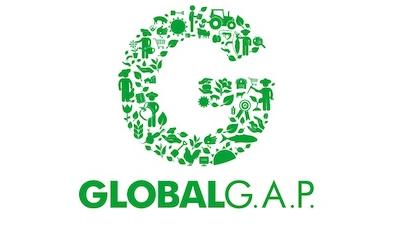 GlobalG.png