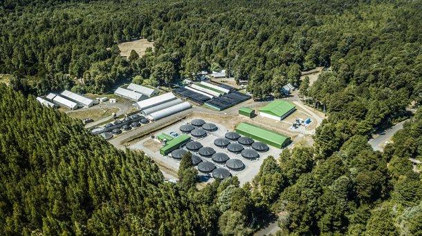 Chile facility