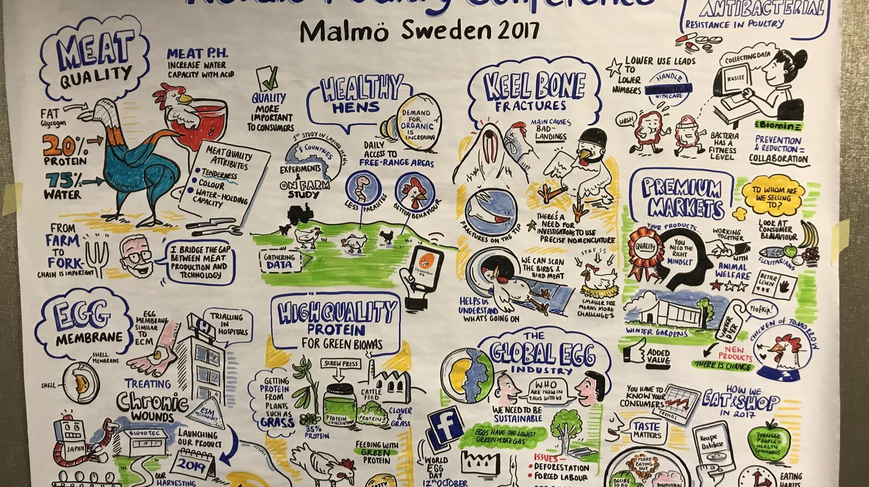 nordic conference drawing 1