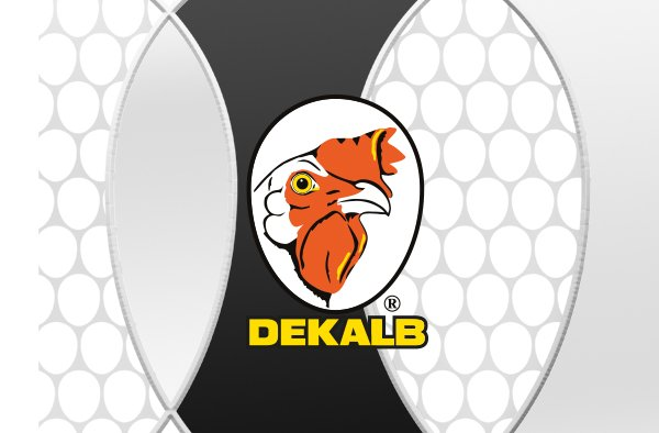 Joice-and-Hill-Dekalb-Product-Graphic.jpg