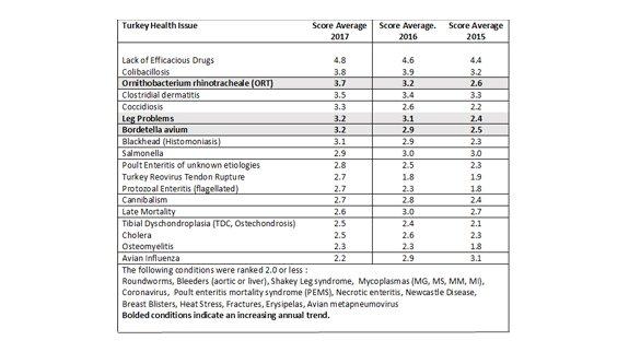 Turkey health survey 2018