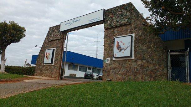 Dekalb Office Brazil