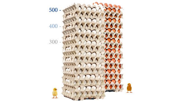 egg tower white and brown layers