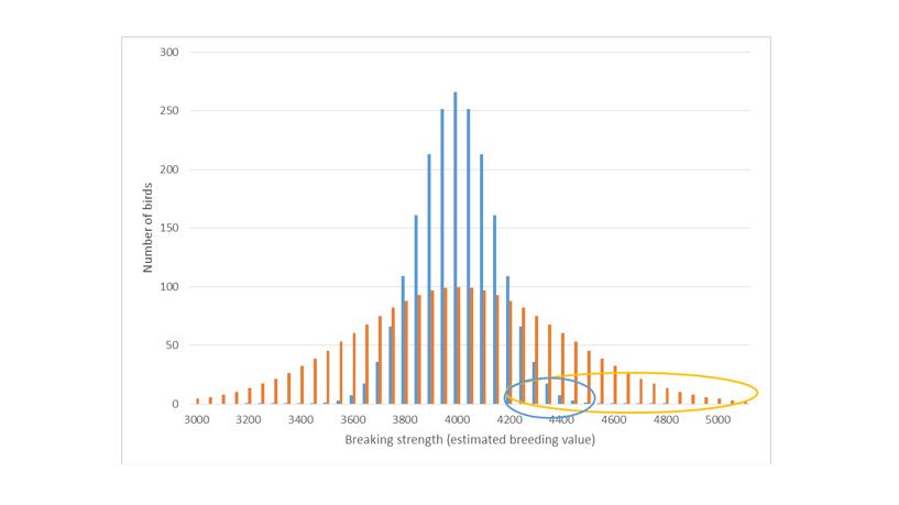 variability graph