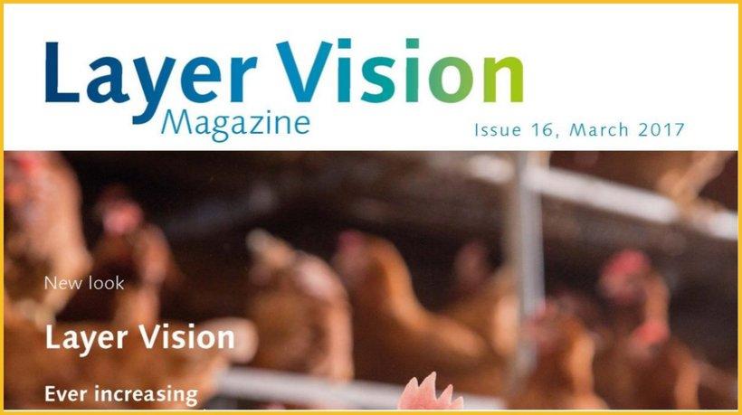 layer vision 16-2017.jpg