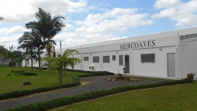 Mercoaves office brazil