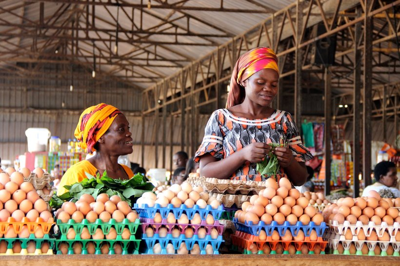africa market brown eggs people layers